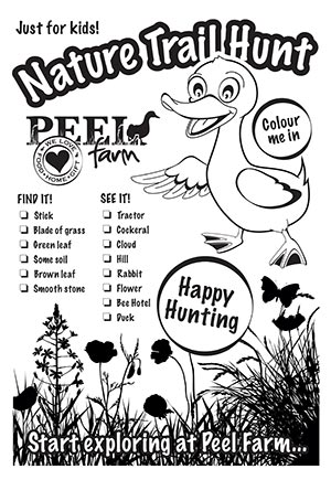 Nature Trail Activity Sheet